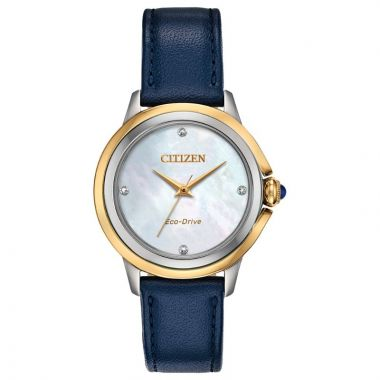 Citizen Eco-Drive Ceci Leather Women's Diamond Watch